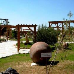 Oleastro Organic Olive Park In Anogyra