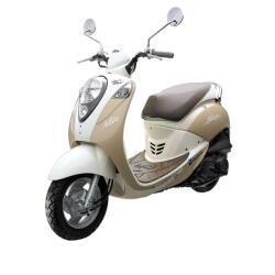 Petrides Rentals Scooter Rentals